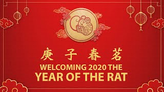 庚子春茗|Welcoming 2020 the Year of the Rat