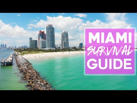 MIAMI SURVIVAL GUIDE! - Top 5 Things To Know Before Coming To Miami With Davidsbeenhere