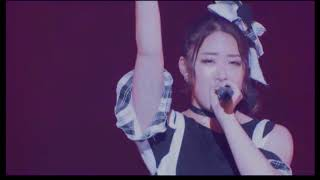 17 - This is Cheeky Parade