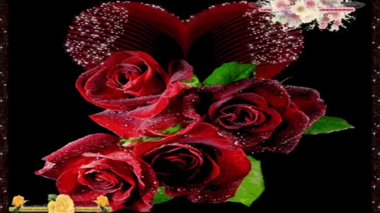 Gloria estefan alejandro fernandez en el jard n youtube for Alejandro fernandez en el jardin lyrics