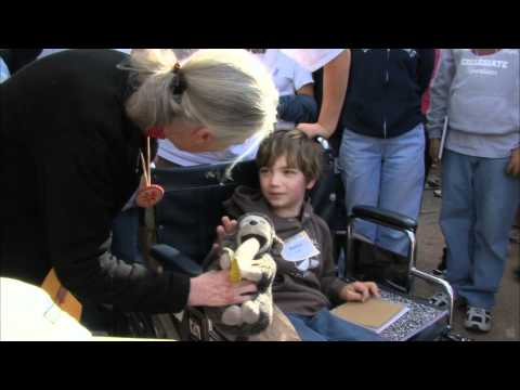 Jane's Journey - HD Trailer (2010) Angelina Jolie, Pierce Brosnan and Jane Goodall