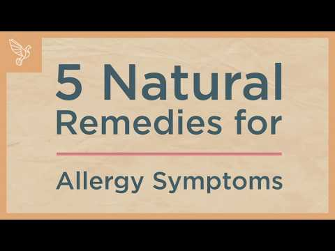 Top 5 Natural Remedies for Allergy Symptoms