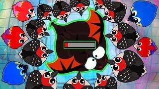 Mope.io NEW KILLER BIRDS  UPDATE!!!  WOODPECKERS KILLED BLACK DRAGON