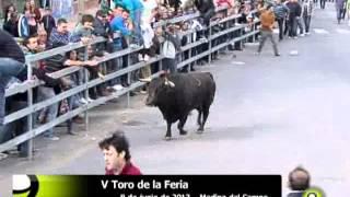 V Toro de la Feria - Poderoso - Medina del Campo 2013