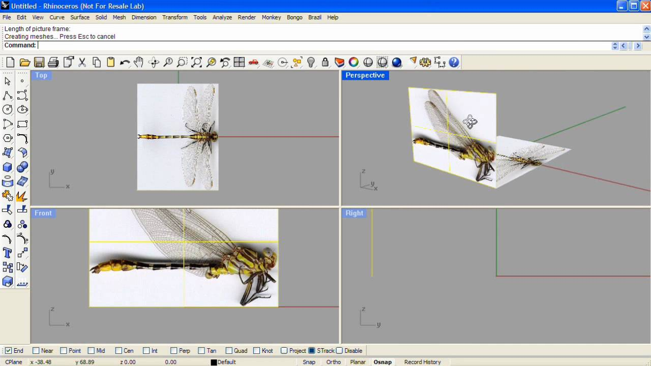 Modeling from reference images