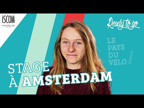 Stage à Amsterdam - Etudiante ISCOM - Interview TRIK TRAK TREK – READY TO GO