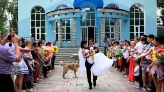 Идеальная свадьба.6 выпуск