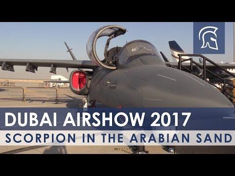 Scorpion In The Arabian Sand