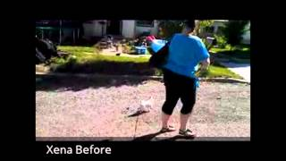 Talented K9 - Xena The Chihuahua - Lesson 1 - Leash Pulling And Dog Reactivity
