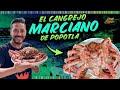 El CANGREJO MARCIANO el más GRANDE de México | Popotla Día 5 #DondeiniciaMexicoLRG