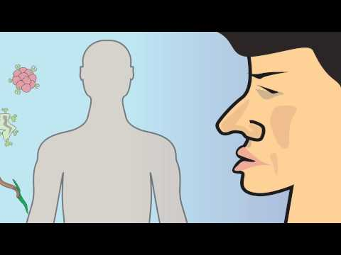 Video 12 Innate Immunity and Adaptive Immunity