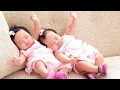 Baby Life |  Twin Babies Dancing - Funny Baby Dance Compilation