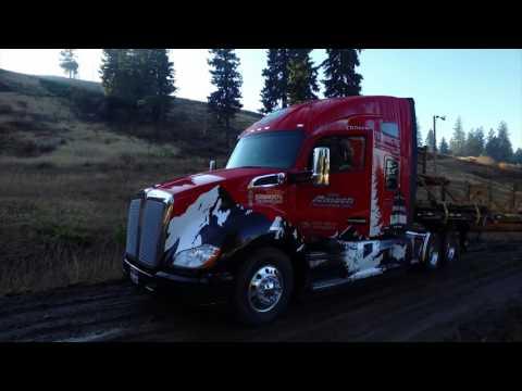 Cutting of the U.S. Capitol Christmas Tree 2016 - McCall, Idaho
