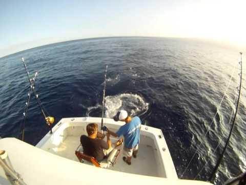 Kona Coast, Hawaii Ono - Hookset to Landing - w/ Bite Me Sportfishing