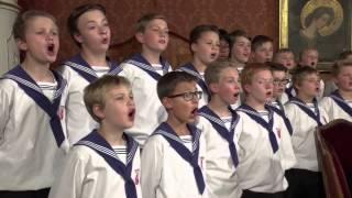 St. Florianer Sängerknaben - Es wird scho glei dumpa