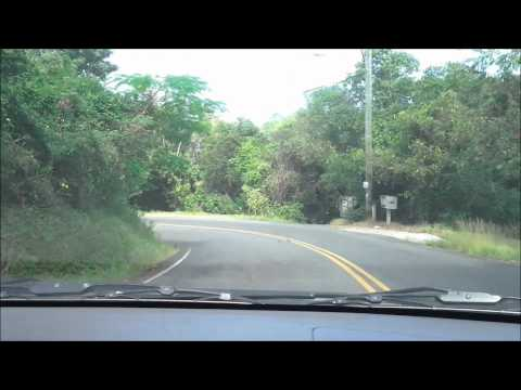 Dorothea to Charlotte Amalie