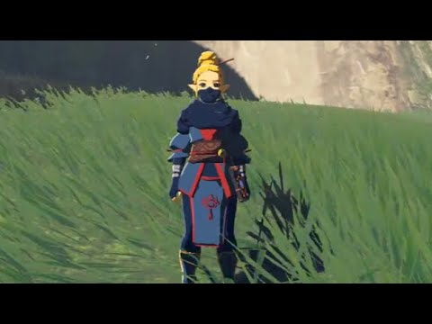 Zelda's Stealth Outfit