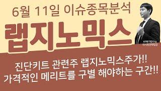 랩지노믹스 (084650) - 진단키트 관련주 랩지노믹…