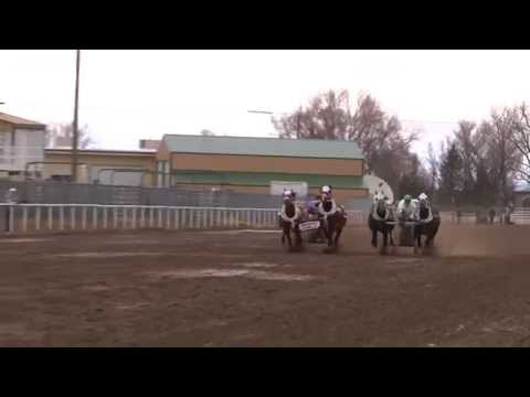 Young Gunz Chariot Racing (Idaho State Races Day 1 of 2.)