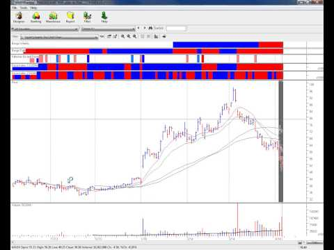April 6, 2014 VoSI Real Time Market Webinar - Gil Morales' S