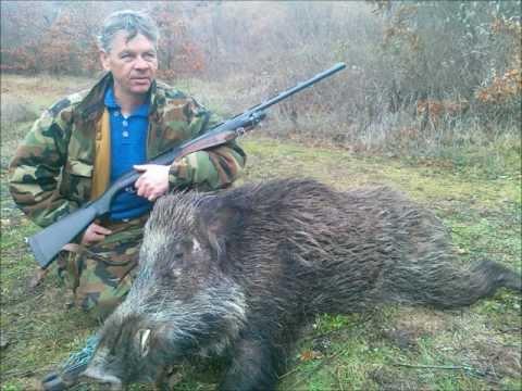 igor stojanoski lov na diva svijna 30.12.2012