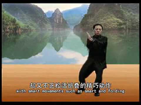 Chen Bin Chen style Tai Chi 40 form Demonstration routine 1/3
