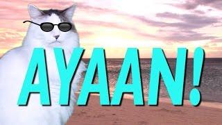 happy-birt-ay-ayaan---epic-cat-happy-birt-ay-song
