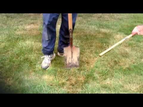 How to remove sod