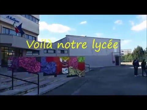 Présentation du Lycée Vallone - Galatina