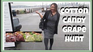 Vlog: Cotton Candy Grape Hunt