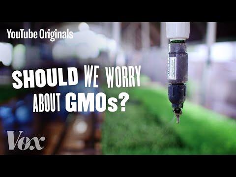 Should We Be Worried About GMOs? - Glad You Asked S1