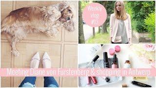 Meeting Diane von Furstenberg   Weekly vlog #13   Axelle Blanpain