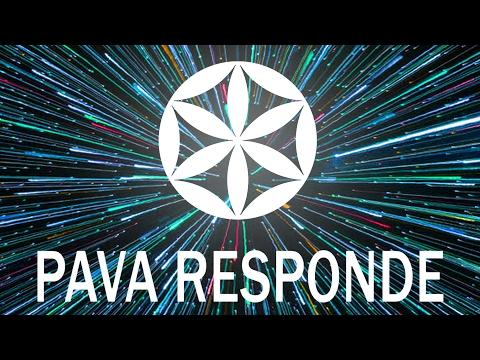 PAVA RESPONDE - Ayahuasca, Cannabis, Carne, Transição Planetária e Mais.