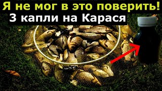 КОРОЛЬ ПОВЕРЖЕН НОВЫЙ УБИЙЦА КАРАСЯ 1000 раз мощнее Супер рыболовная насадка