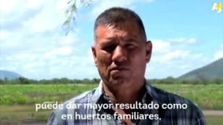 Video: AGUA EN POLVO: Una innovación mexicana para las zonas deserticas