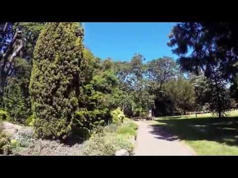 Stunning Beacon Hill Park Victoria BC