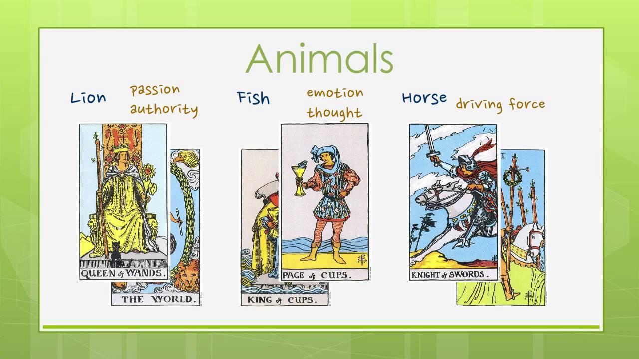 Reading Tarot Cards Symbols In Tarot 1 Youtube