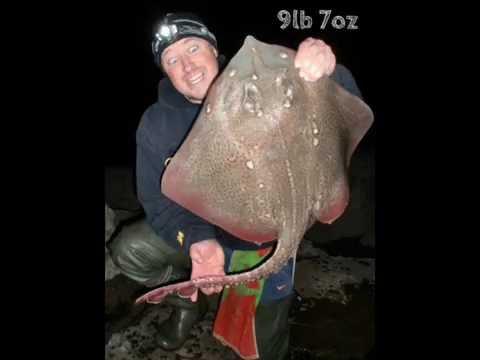 Sea Fishing In Wales: 2012