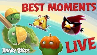 Angry Birds Favorite Moments LIVE! 24/7 🔴 | Angry Birds