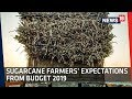 Sugarcane Farmers on Pending Payments and Demands | Budget 2019