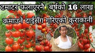 टमाटर खेती गरेर महिनाको २ लाख कमाउने दाईसँग गरिएको कुराकानी । sathi.com / दिपेन्द्र 'अश्रुमाली'