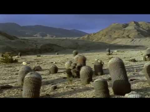 Desert Documentary HD - Riddle of the Atacama Desert
