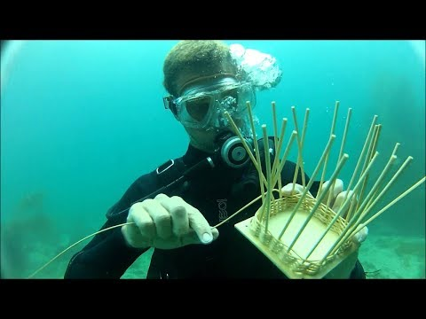 Ranting About Underwater Basket Weaving
