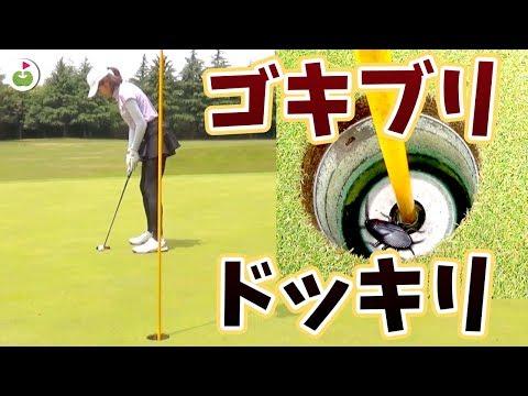 カップインしてボール拾おうとしたらゴキブリ入ってるドッキリ🤪【誠ノ介くんとゴルフ#4】