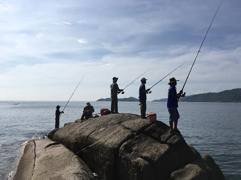 Tìm về thiên nhiên ! Câu Cá ở Cam Ranh và Bình Tiên !
