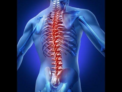 Lumbar Pillow bantal terapi tulang punggung dan syaraf terjepit.