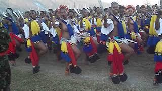 Royal Eswatini Police maidens dancing before their Majesties during the 2018 Umhlanga Reeddance.