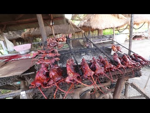 Eating Grilled RAT and The Killing Caves | CAMBODIA Day 7 Pt 3