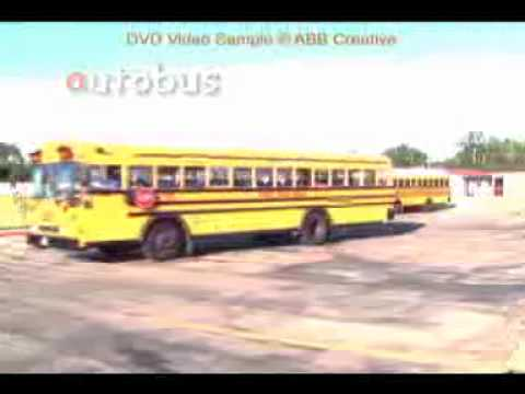 Bilingual Bee Alphabet DVD Sample Video Clips - French PAL version