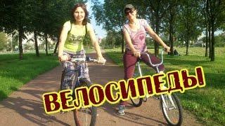 #880 Россия Санкт Петербург Кошки На велосипедах с ветерком